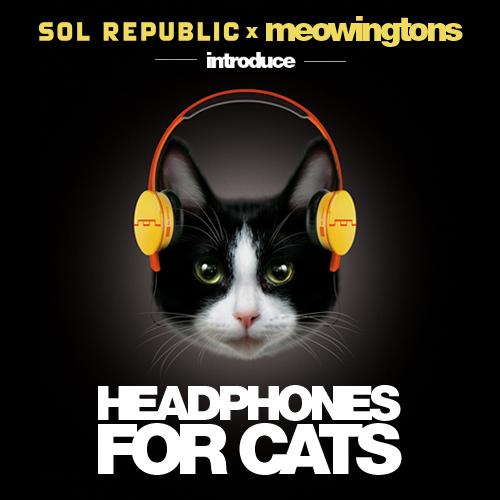 Audífonos para gatos